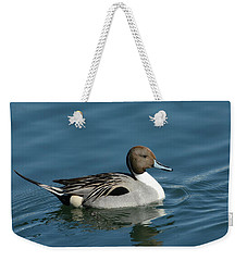 Weekender Tote Bag featuring the photograph Handsome Drake by Fraida Gutovich