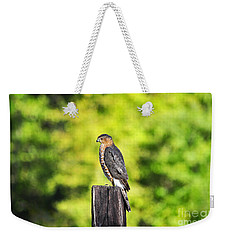 Weekender Tote Bag featuring the photograph Handsome Hawk by Al Powell Photography USA
