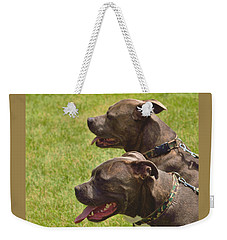 Handsome Pit Bulls Weekender Tote Bag by Kae Cheatham