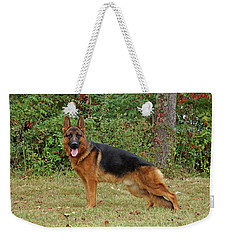 Weekender Tote Bag featuring the photograph Handsome Rocco by Sandy Keeton