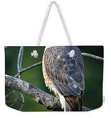 Handsome Sharp Shinned Hawk Weekender Tote Bag