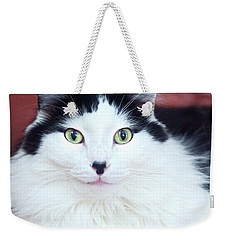 Weekender Tote Bag featuring the photograph Handsome Tuxy by Byron Varvarigos