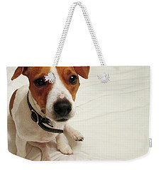 Happiness Is A Cute Puppy Weekender Tote Bag
