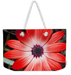 Weekender Tote Bag featuring the photograph Happy Birthday Carl by Mr Photojimsf