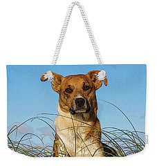 Happy Dog At The Beach Weekender Tote Bag