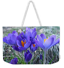 Harbinger Of Spring Weekender Tote Bag by Barbara McDevitt