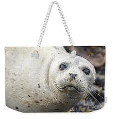Harbor Seal Portrait Weekender Tote Bag