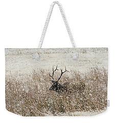 Harem Bull Weekender Tote Bag