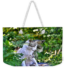 Weekender Tote Bag featuring the photograph Harlequin Cat Twins by Chriss Pagani