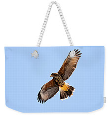 Weekender Tote Bag featuring the photograph Harris's Hawk H37 by Mark Myhaver