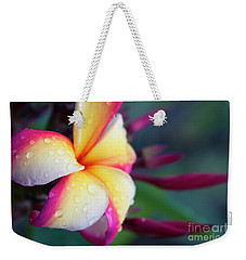 Weekender Tote Bag featuring the photograph Hawaii Plumeria Flower Jewels by Sharon Mau