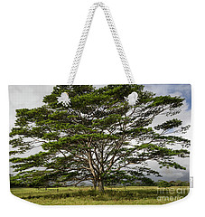Hawaiian Moluccan Albizia Tree Weekender Tote Bag