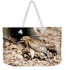 Weekender Tote Bag featuring the photograph Hawk And Gecko by George Randy Bass