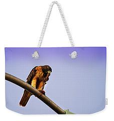 Hawk Eating Weekender Tote Bag