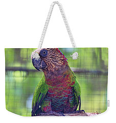 Hawk-headed Parrot Weekender Tote Bag