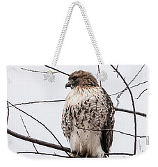 Hawk On Alert Weekender Tote Bag
