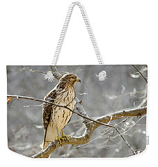 Weekender Tote Bag featuring the photograph Hawk On Lookout by George Randy Bass