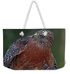 Hawk Portrait Weekender Tote Bag