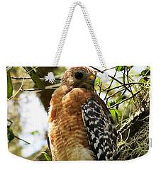 Hawk Taking A Rest On A Tree In Lakeland Florida Weekender Tote Bag