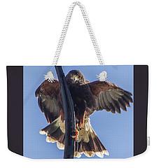 Hawk Watch 6 Weekender Tote Bag