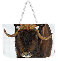Weekender Tote Bag featuring the photograph Head Butt by Tony Beck