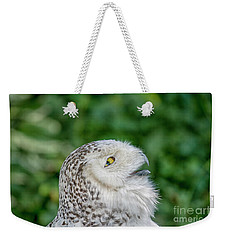 Head Of Snowy Owl Weekender Tote Bag by Patricia Hofmeester