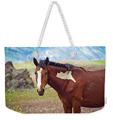 Head Shot Of A Wild Paint Horse Weekender Tote Bag