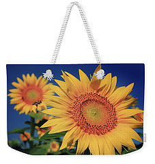 Weekender Tote Bag featuring the photograph Heading For Gold by Chris Berry