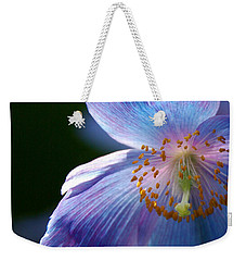 Weekender Tote Bag featuring the photograph Healing Light by Byron Varvarigos