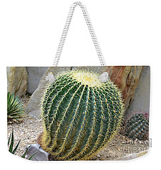 Weekender Tote Bag featuring the photograph Hedgehog Cactus by James Fannin