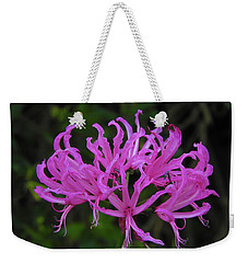 Weekender Tote Bag featuring the photograph Helen by Mark Blauhoefer