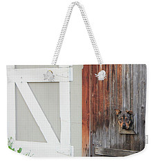 Weekender Tote Bag featuring the photograph Hello, Comet by Christin Brodie