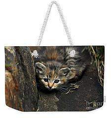 Hello Little Kitty Weekender Tote Bag