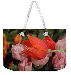 Hello Weekender Tote Bag by Sandy Moulder