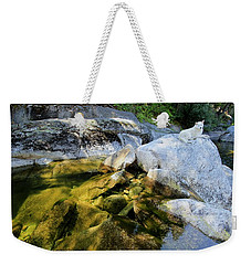 Weekender Tote Bag featuring the photograph Hello by Sean Sarsfield