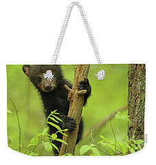Weekender Tote Bag featuring the photograph Hello There by Coby Cooper