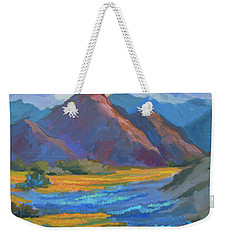 Weekender Tote Bag featuring the painting Henderson Canyon Borrego Springs by Diane McClary