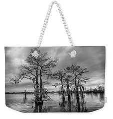 Henderson Swamp Wetplate Weekender Tote Bag by Andy Crawford