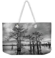 Henderson Swamp Wetplate Weekender Tote Bag