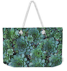 Hens And Chicks - Digital Art  Weekender Tote Bag