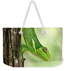Weekender Tote Bag featuring the photograph Here's Looking At You by Judy Kay