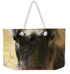 Here's Looking At You Weekender Tote Bag by Suzanne Luft