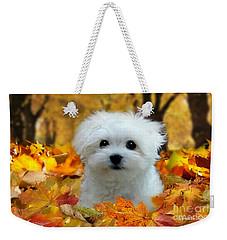 Hermes In The Fall Weekender Tote Bag