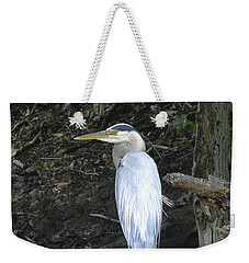 Weekender Tote Bag featuring the photograph Heron In The Woods by Kathy Kelly