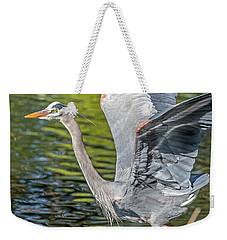 Weekender Tote Bag featuring the photograph Heron Liftoff by Kate Brown