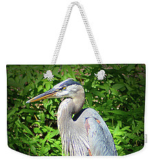 Blue Heron With An Attitude Weekender Tote Bag by Kathy Kelly