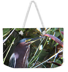 Heron With Yellow Eyes Weekender Tote Bag by Val Oconnor