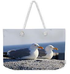 Herring Gulls, Nova Scotia Weekender Tote Bag