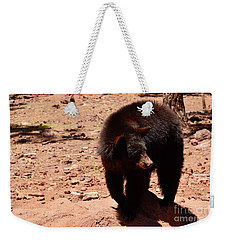 Weekender Tote Bag featuring the photograph Hey Wanna Play by Debby Pueschel