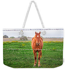 Weekender Tote Bag featuring the photograph Hey You - Ya You by Melinda Ledsome